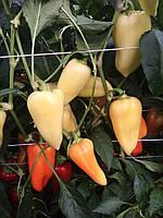Хаскі F1 Khaski насіння перцю конічного білого (500 шт)