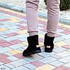 Модельні чорні жіночі замшеві уггі натуральна замша з декором корона, фото 8