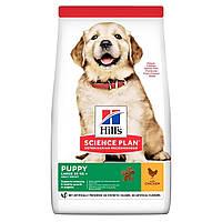 Сухой корм HILL`S (Хилс) Healthy Development Puppy Large Breed для щенков крупных пород курица 0.8 кг