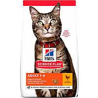 Сухой корм HILL`S (Хилс) Adult Chicken для взрослых кошек курица 0.3 кг