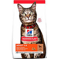 Сухой корм HILL`S (Хилс) Adult Lamb для взрослых кошек ягненок 0.3 кг