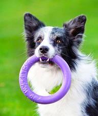 Тренировочный снаряд для собак Пуллер Миди, фото 3