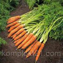 Семена Моркови Наполи (1.8-2.0 мм) (25.000 шт) Bejo Zaden