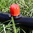 Крапельниця регульована 0-70 л / г (AOD-0170) Presto-PS, фото 3