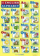 Плакат. Англійський алфавіт для учня. Прописні та друковані літери