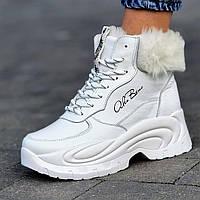 Кросівки жіночі зимові шкіряні білі на товстій підошві (код 8900)