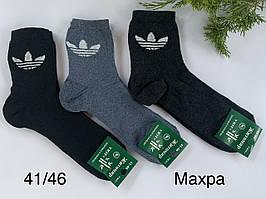 Махрові шкарпетки «Житомир»