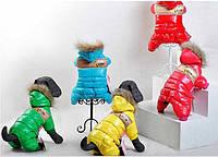 """Пуховик для собак """"QZARK"""". Одежда для собак."""
