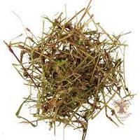 Спорыш Карпаты 50 гр лекарственная трава BB, КОД: 2650838