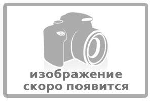 Пр-ка регул.склянки ред. мосту середовищ.КрАЗ (В=0,1). 200-2402080-02