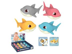 Водоплавна заводна іграшка акула 11см., 12шт. у дисплеї н. 33х37х6см. 368-3 (180)