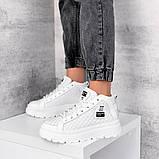 Демисезонные кроссовки = BLONDI= 11248, фото 3