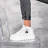 Демисезонные кроссовки = BLONDI= 11248, фото 8
