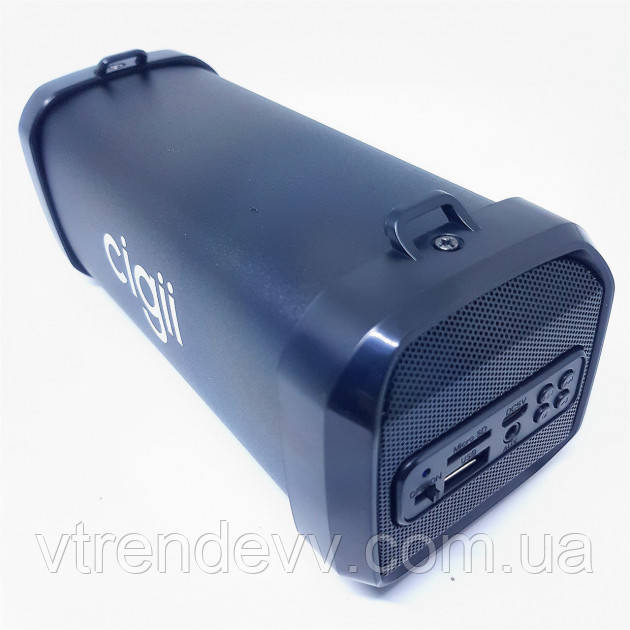 Портативна Bluetooth колонка SPS Cigii F41