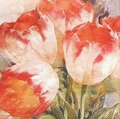 Салфетка декупажная Тюльпаны 5520