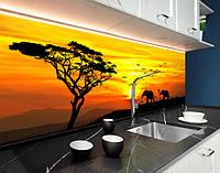 Кухонний фартух для кухні слони і птиці, африка, тварини, захід ПВХ панель 62 х 205 см (an166-5)