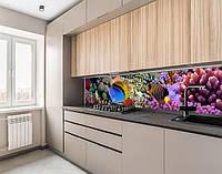 Наклейка вінілова на кухонний фартух з морською флорою, із захисною ламінацією 65х250 см