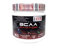 Dl Nutrition BCAA Factor 500 g
