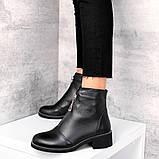 Демісезонні черевички 11262, фото 3