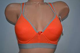 Топик Lemila чашка С Оранжевый 1