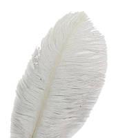 """ПЕРО страуса """"ЛЮКС"""".Цвет белый.Размер 40-45cм"""