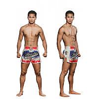 Шорты для тайского бокса и кикбоксинга BOOSTER Thai Flag Shorts Белые Таиланд