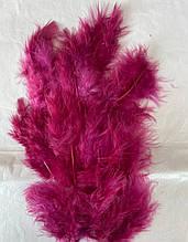 Перья декоративное бордовый (5-8см) 100шт