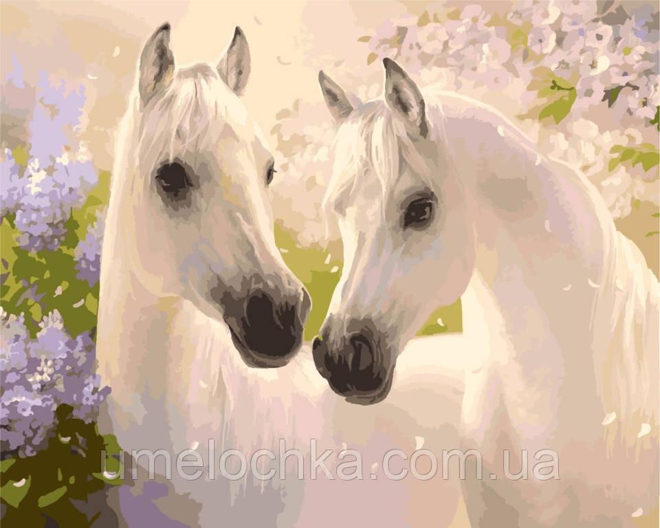 Картина по номерам на холсте Идейка Белые лошади 40 х 50 см KH2433