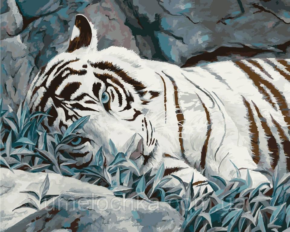 Раскраска по цифрам Идейка Белый тигр худ. Билод Люси 40 х 50 см KH2453