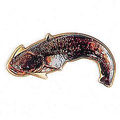Значок Balzer із зображенням сома