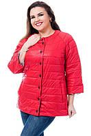 Жіноча стильна коротка куртка з укороченим рукавом Батал, фото 1