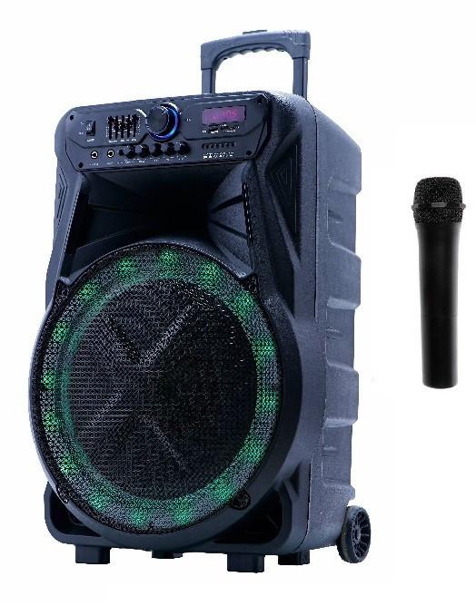 Автономна акустична система Goldteller GT-6025 з мікрофоном