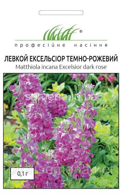 Левкой (матіола) Ексельсіор темно-рожевий 0,1 г.