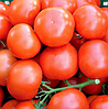 ЛОГУР F1 - семена томата индетерминантного, 1 000 семян, Rijk Zwaan