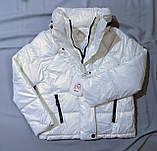 Куртка жіноча коротка з капюшоном молочна L-2XL еврозіма, фото 7
