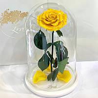Желтая роза в колбе Lerosh - Lux 33 см