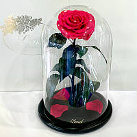 Малиновая роза в колбе Lerosh - Lux 33 см