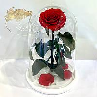 Красная роза в колбе Lerosh - Lux 33 см на белой подставке