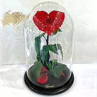 Красная роза в колбе Сердце Lerosh - Lux 33 см