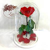 Красная роза в колбе Сердце Lerosh - Lux 33 см на белой подставке