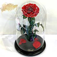 Красная Блестящая роза в колбе Lerosh - Lux 33 см