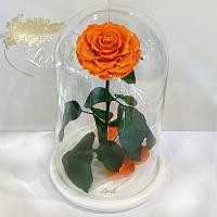 Оранжевая роза в колбе Lerosh - Lux 33 см