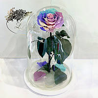 Нежная Радужная роза в колбе Lerosh - Lux 33 см
