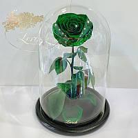Зеленая роза в колбе Lerosh - Lux 33 см