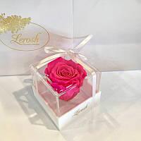 Яскраво-рожевий стабілізований бутон троянди в подарунковій коробці Lerosh - Classic