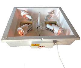 Інкубатор Квочка МІ-30-1, фото 3