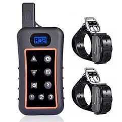 Электроошейник для 2-х собак дрессировочный электронный Trainertec DT1200 V2, водонепроницаемый аккумуляторный