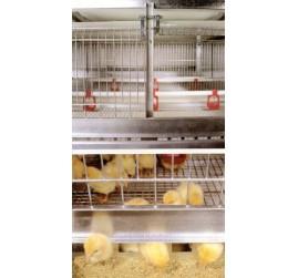 Комплекты оборудования для содержания птицы (украина)