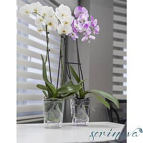 Горшок для орхидеи Orchid 3 л прозрачный, фото 2