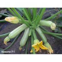 Семена кабачка Кавили F1, Nunhems (Нидерланды), 1000 семян